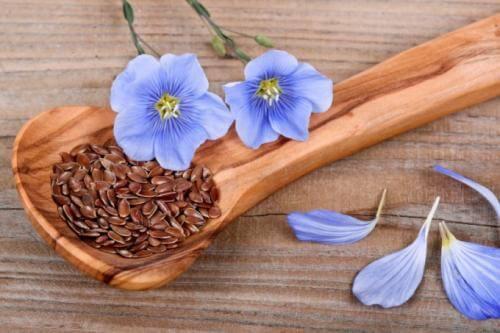 Насіння льону можна жувати.  Чи можна їсти сирими насіння льону